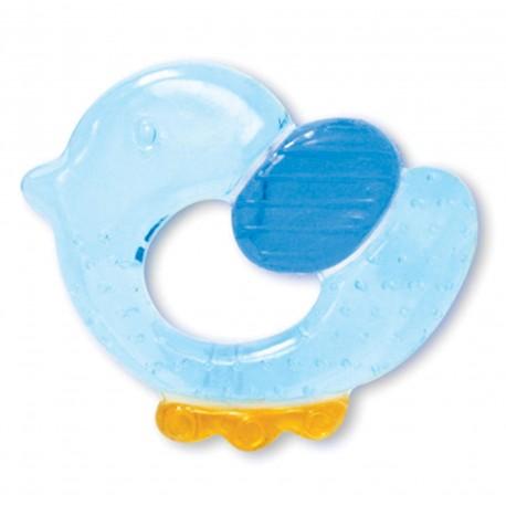 anneau dentition gazou